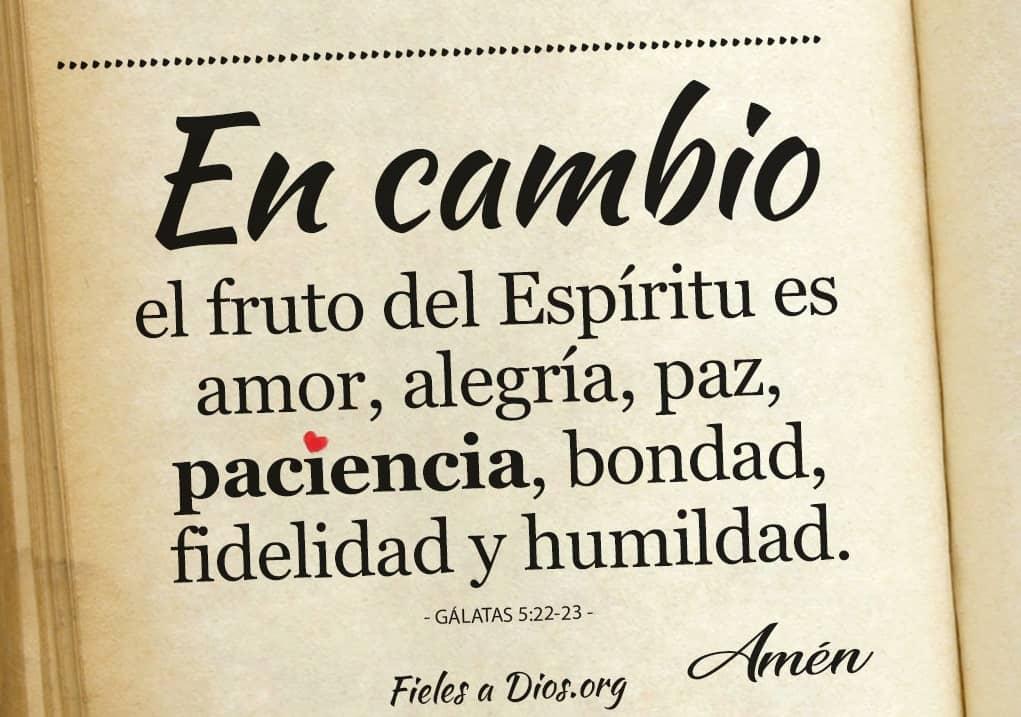 bondas fideldad y humildad